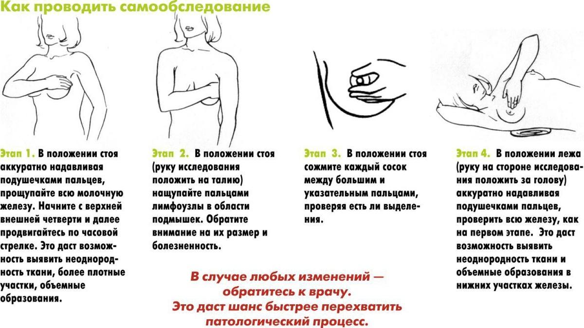imeyut-znachenie-razmeri-zhenskih-soskov