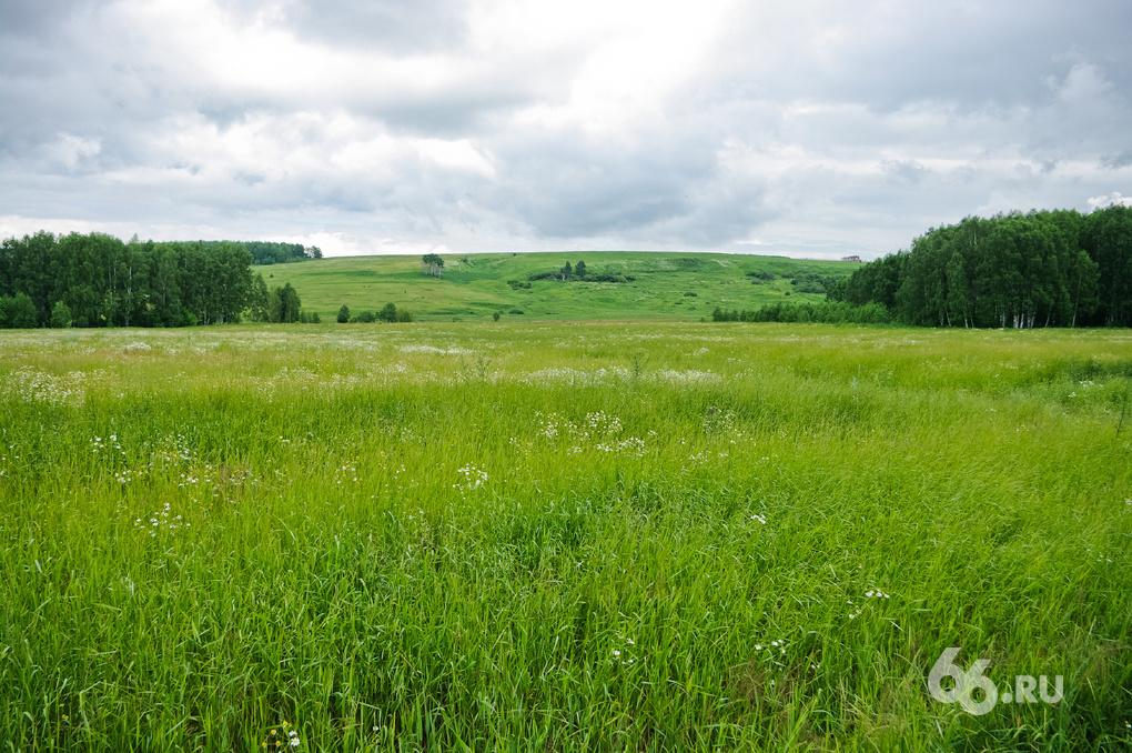 Евгений Куйвашев повелел раздать многодетным землю