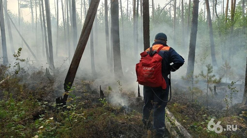 Как тушат лесной пожар, из-за которого задыхается Екатеринбург. Фоторепортаж