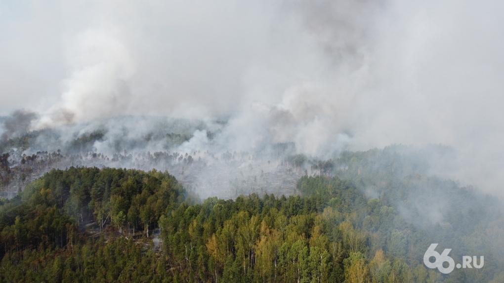 Под Екатеринбургом неделю тушат лесной пожар, из-за которого город дышит гарью. Фоторепортаж