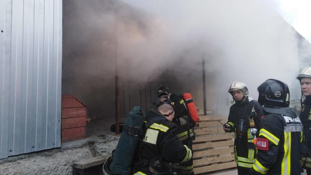 «Сотни трупов животных». В Екатеринбурге сгорел подпольный террариум