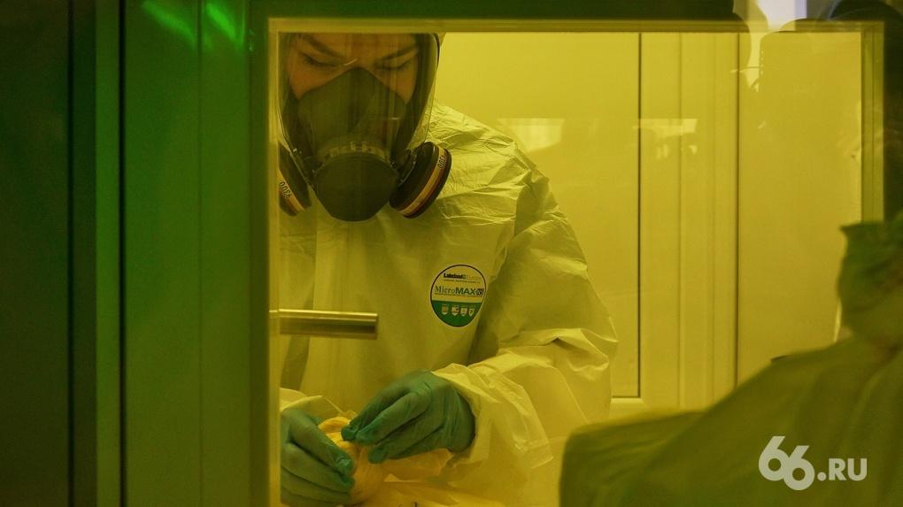 В Екатеринбурге построят лабораторию для исследования смертельно опасных вирусов