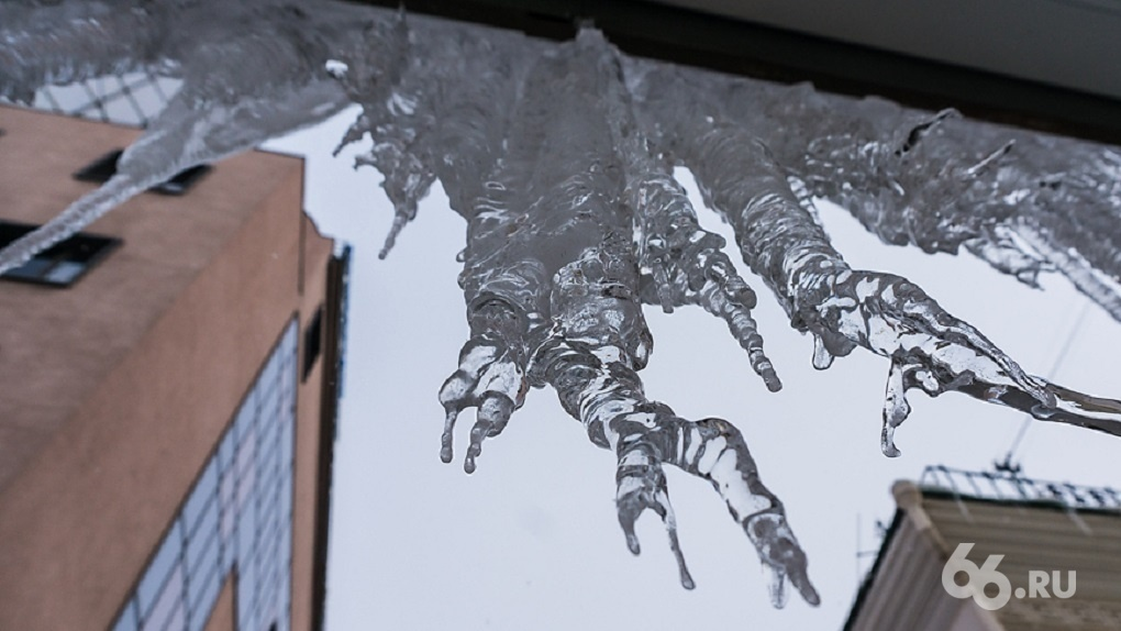 Эту зиму синоптики назвали аномально теплой. На очереди — аномально ранняя весна