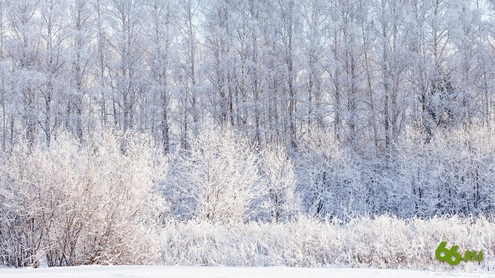 Что делать, чтобы не умереть от холода в выходные. Полезные советы от МЧС