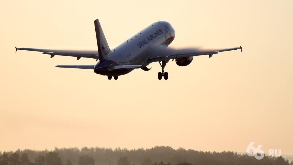 Россия возобновит международное авиасообщение с тремя странами. Сроки