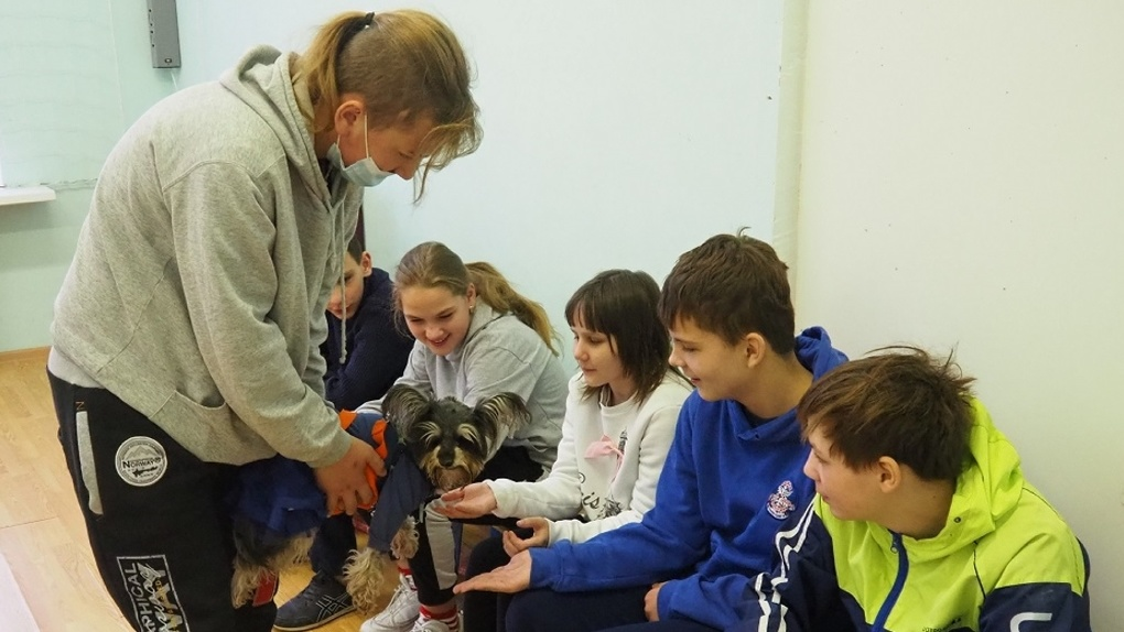 Участники проекта «Волонтер — это звучит гордо!» провели сеанс канистерапии в школе-интернате