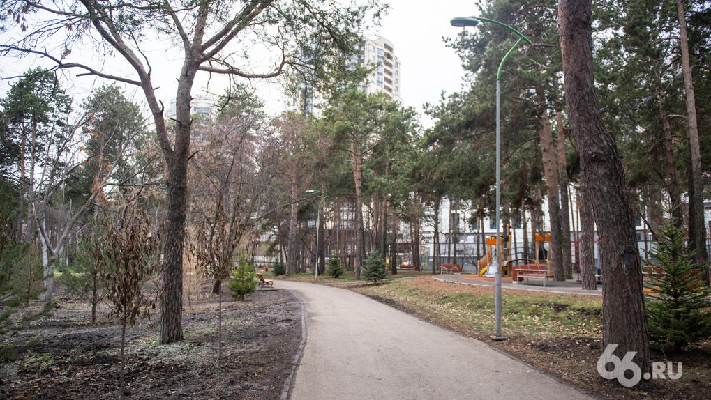 «В таком состоянии парк открывать нельзя». Экологи Александра Высокинского проверили Зеленую рощу
