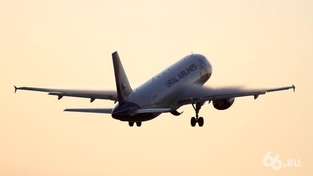 Глава Минтранса назвал сроки возобновления внутреннего и международного авиасообщения