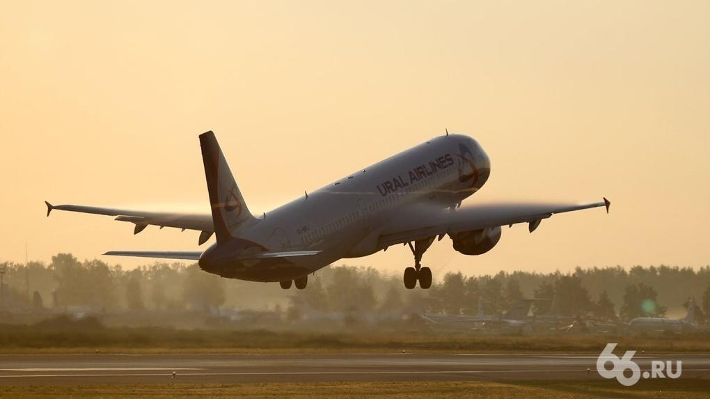 Глава «Уральских авиалиний» рассказал Владимиру Путину, как авиакомпания спасается от банкротства