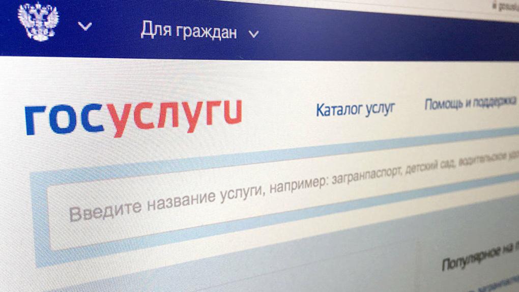 В УМВД отказались заводить дело на хакеров, которые взломали «Госуслуги» и «проголосовали» на праймериз