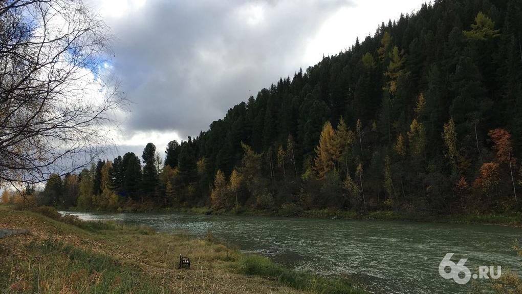 Кто отравил реку, из которой берет воду целый город? Хроника экологического скандала и версии ЧП