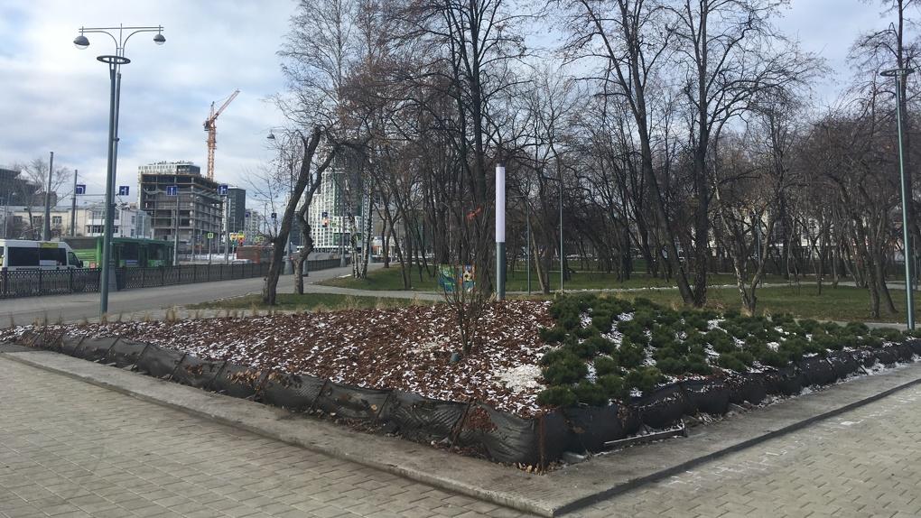 Парк-бульвар у «Екатеринбург Арены» на картинках и в жизни. Найди три отличия