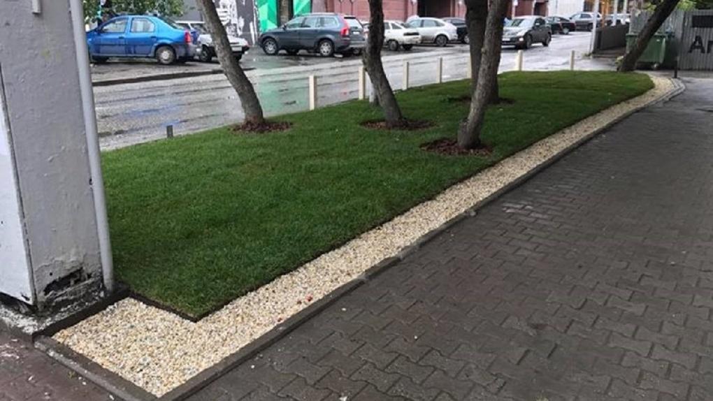 Экспериментальный газон с защитой от грязи размножат по городу. Как он работает и кто за это заплатит