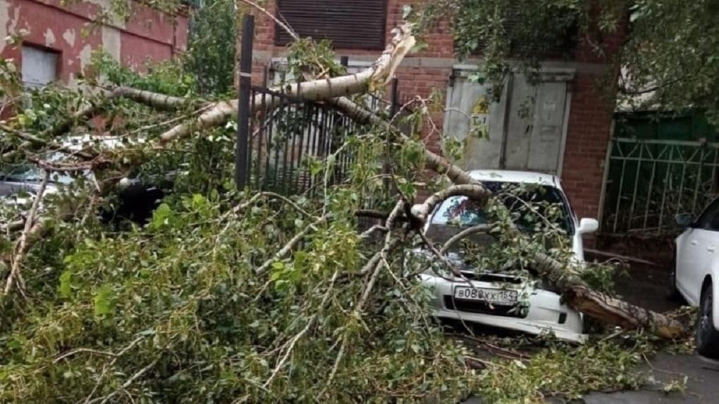 На Свердловскую область идет шторм с грозами и градом