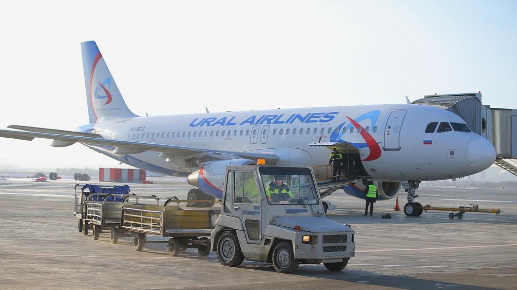 Авиасообщение между Россией и Грузией могут возобновить в следующем году