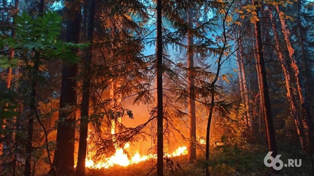 Под Первоуральском тушат крупный лесной пожар. Спасатели эвакуировали десятки людей