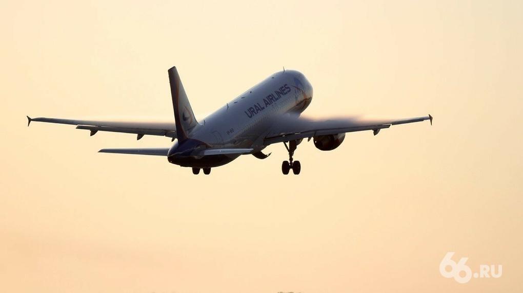 Россия возобновит авиасообщение еще с тремя странами, несмотря на растущее число больных COVID