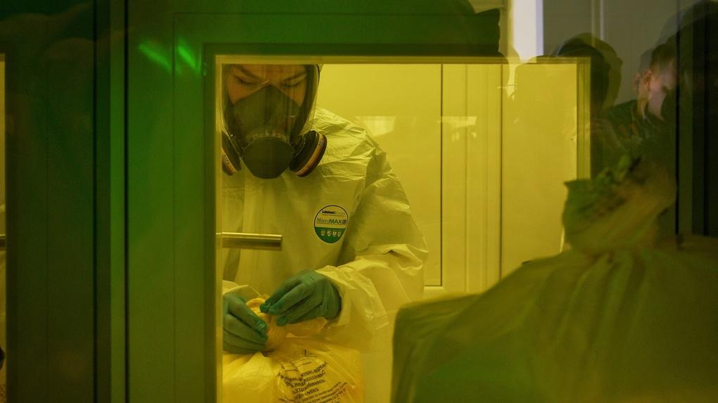 Сдать тест на коронавирус в Екатеринбурге: какие они бывают и чем отличаются друг от друга