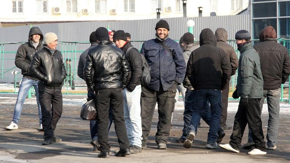 Силовики накрыли канал поставки нелегальных мигрантов. Обыски идут в двух городах, задержаны 8 человек