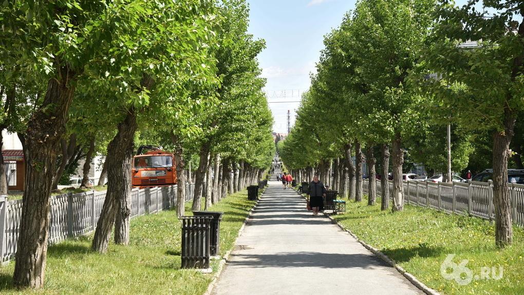 Парк и сквер в Екатеринбурге защитят от застройки особым статусом