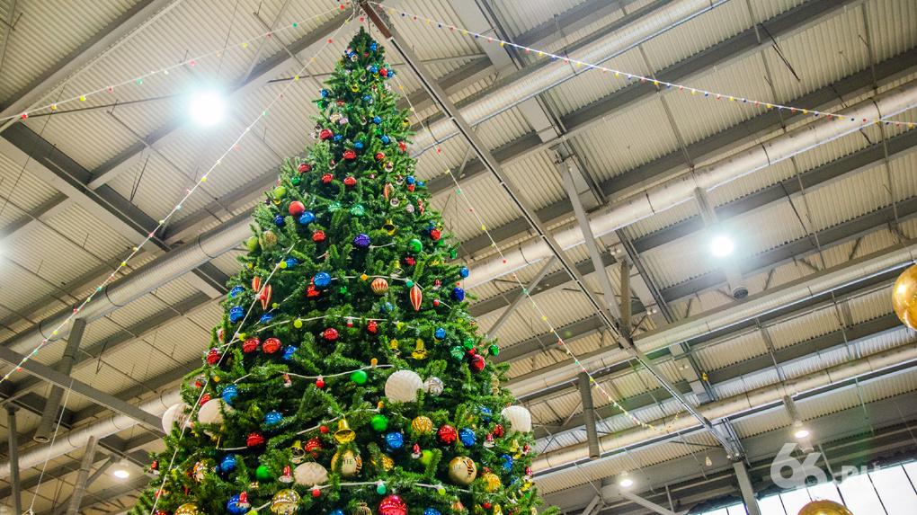Парк аттракционов и каток. Чего ждать от главной новогодней елки Урала