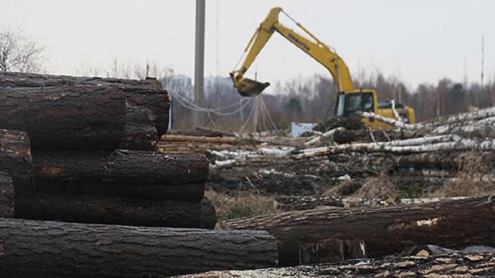 Ради чего вырубили деревья у Шарташа. План строительства огромного логоцентра на выезде из Екатеринбурга