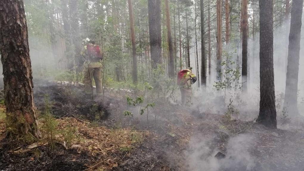 Свердловская область вошла в пятерку регионов с самой опасной пожарной обстановкой