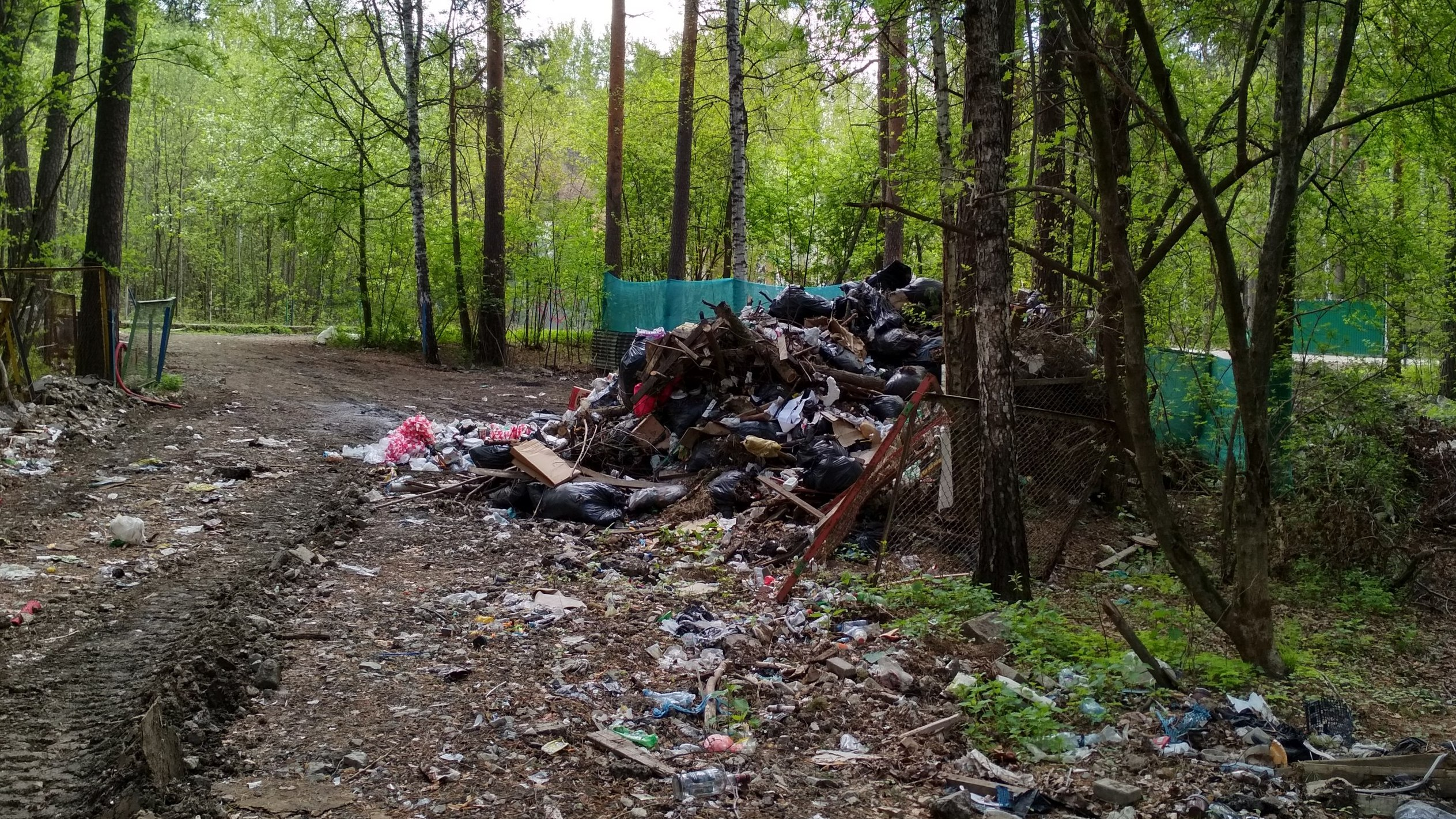 В ЦПКиО нашли огромную свалку. Волонтеры пишут жалобу в министерство природных ресурсов