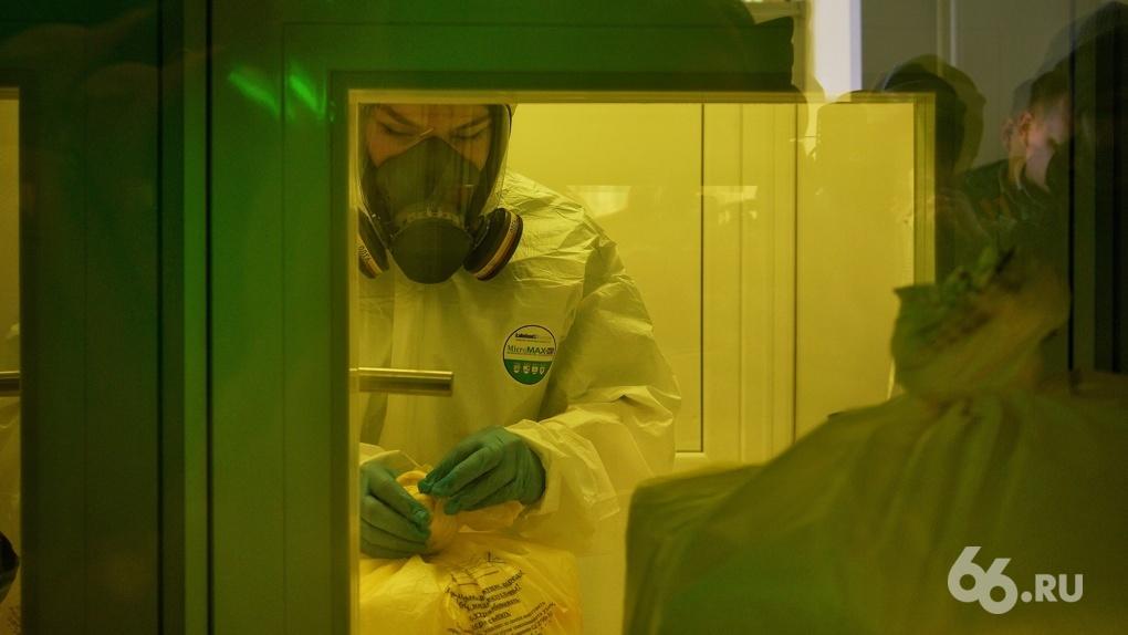 В Свердловской области уже месяц регистрируют по 200 и более новых заболевших коронавирусом