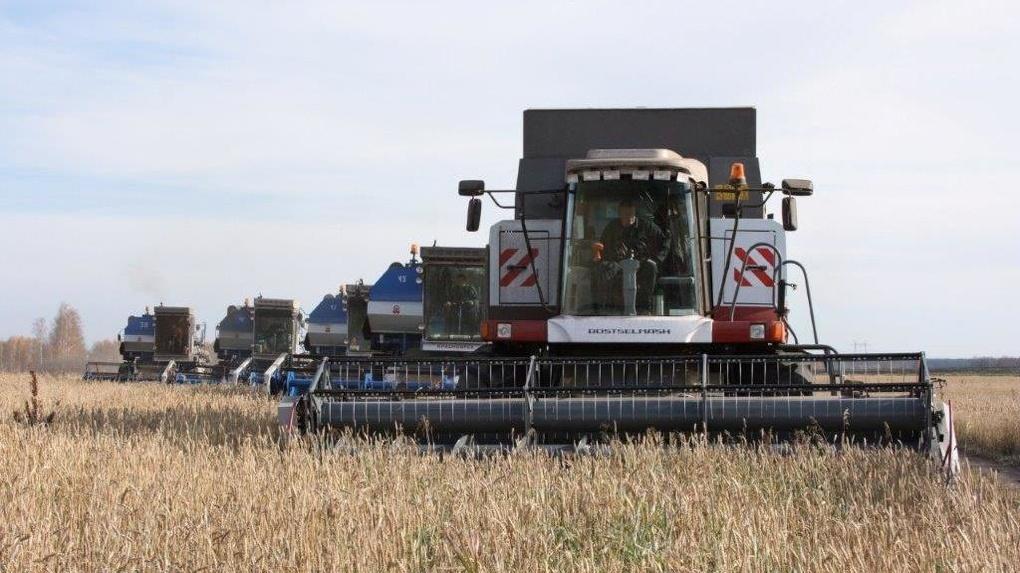 Агрохозяйство «Каменское» завершило уборку зерновых