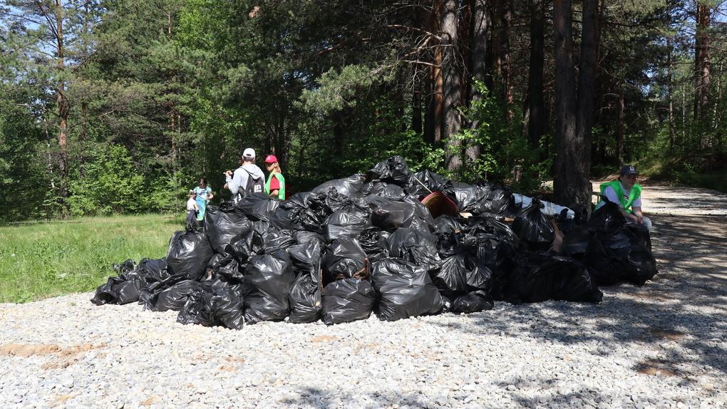 Одновременно в 15 городах Свердловской области прошел экосубботник. Из лесов вынесли 40 тонн мусора