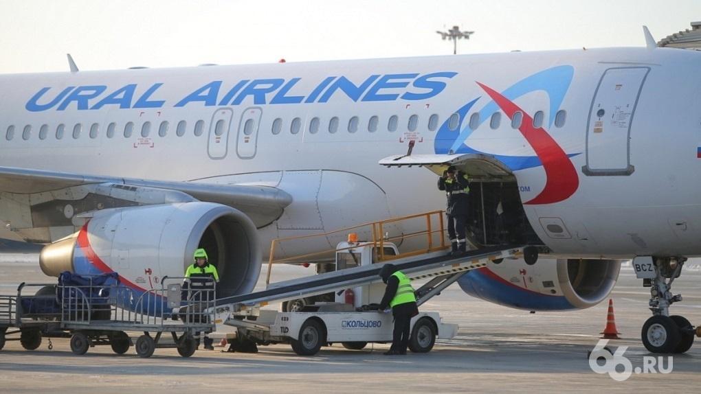 После запрета президента авиакомпании отменяют полеты в Грузию