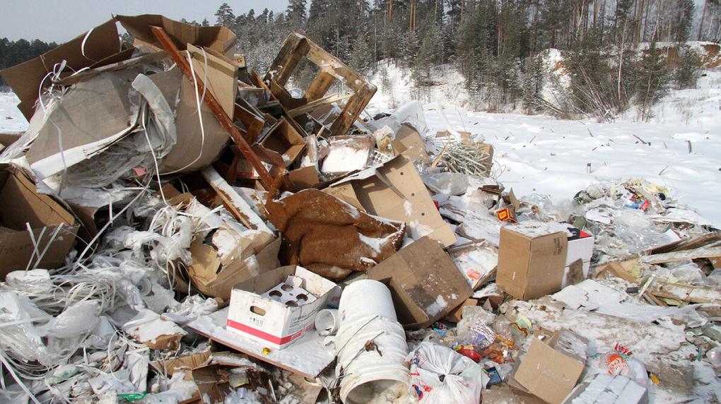 В одном лесу 378 тонн мусора. Регоператор рассказал о самой большой нелегальной свалке в Екатеринбурге