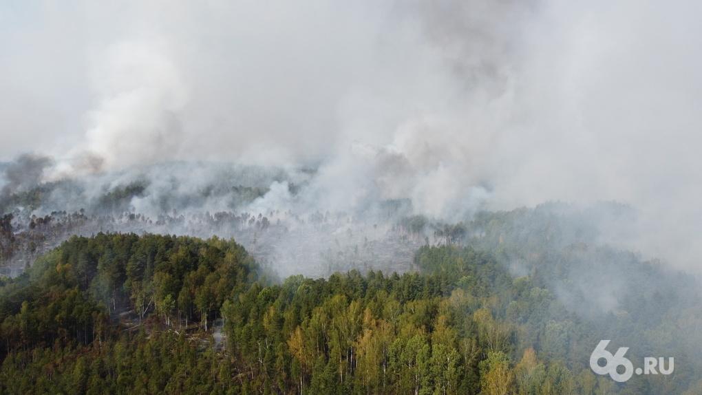 «Почему вы ничего не делаете? Весь лес горит!» Хроника борьбы с подступающими к Екатеринбургу пожарами