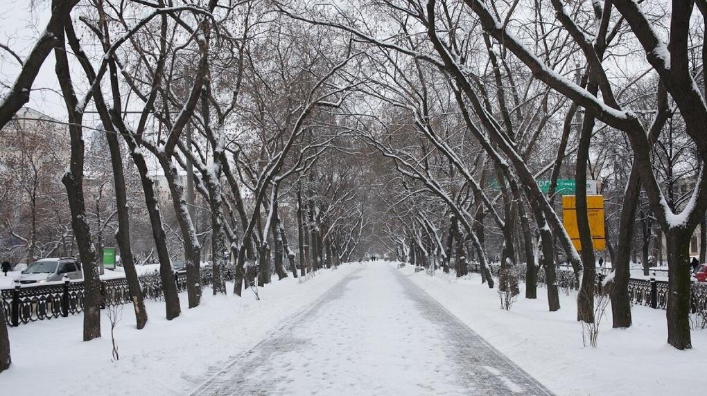 Администрация Екатеринбурга назвала пять парков, которые могут благоустроить в 2022 году