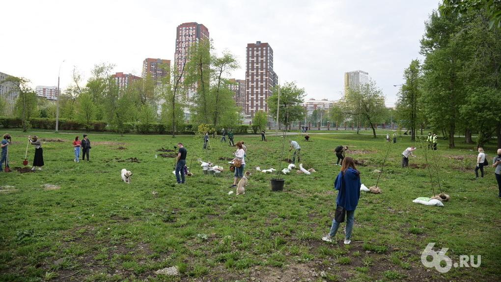 Как начался и чем кончится экологический конфликт в парке УрГУПС. Хроника противостояния и мнения сторон