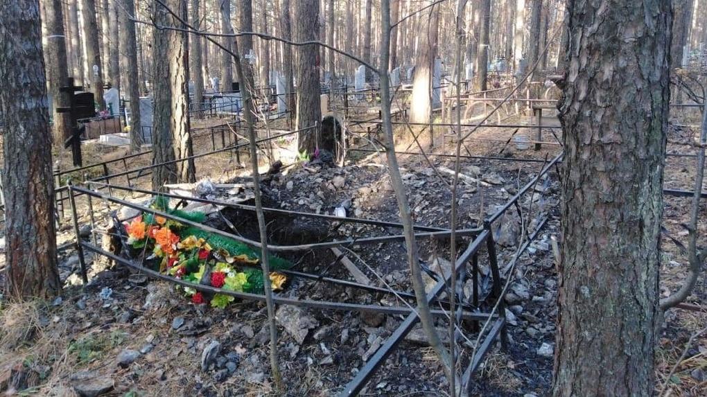 В Нижнем Тагиле голодный медведь месяц ходит по кладбищу и разрывает свежие могилы в поисках пищи