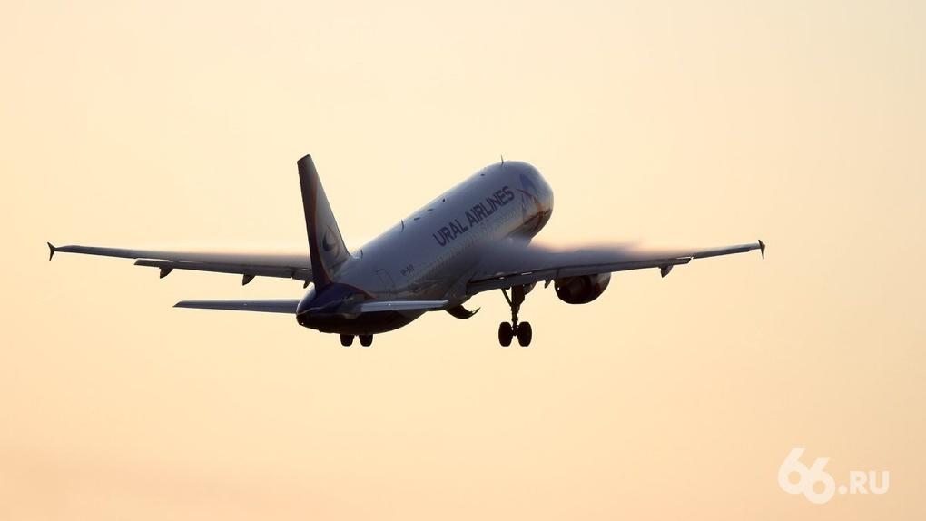 «Уральские авиалинии» и еще семь российских авиакомпаний получили допуски на полеты на курорты Египта