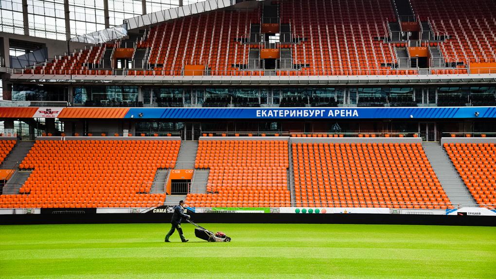 Футболисты ушли, и на поле вырос идеальный газон. Репортаж с пустого Центрального стадиона