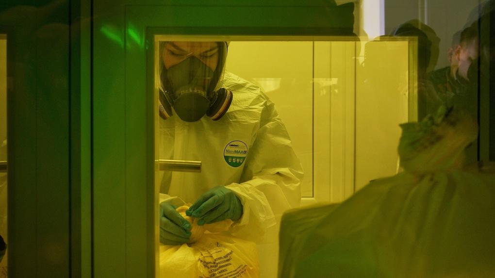 Свердловская область обновила антирекорд суточной смертности от коронавируса