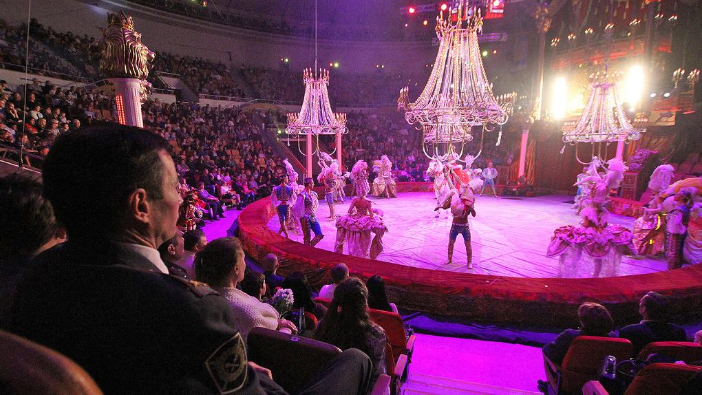 Вместо Анатолия Марчевского в цирк прислали нового директора из Самары