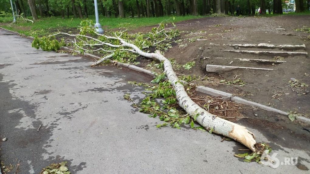 Мэр заявил, что Екатеринбург «оправился от урагана». Но спустя неделю после шторма город завален ветками