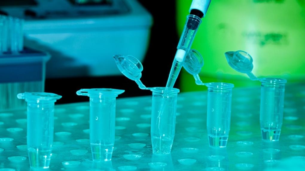 ПЦР, IgM, IgG — все тесты на коронавирус в одном месте по предзаказу