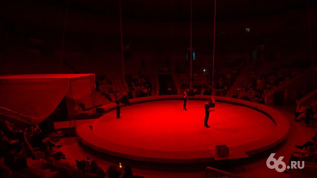 Цирк превратили в арт-площадку VI Уральской биеннале с перформансами. Что здесь посмотреть