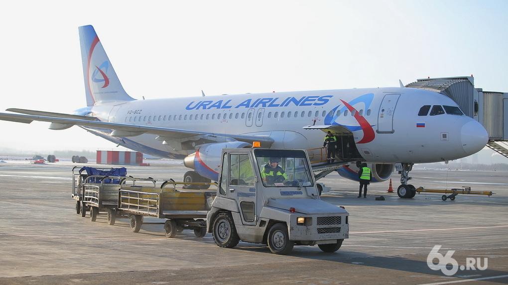 «Уральские авиалинии», Utair и другие перевозчики попросили 50 млрд рублей у государства