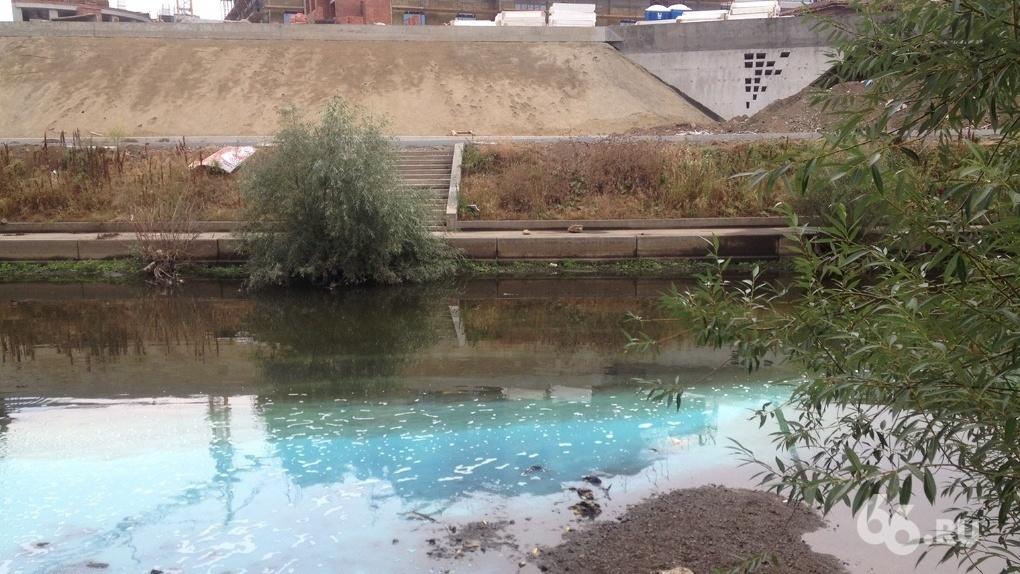 Свердловская область лидирует в стране по числу случаев загрязнений водоемов