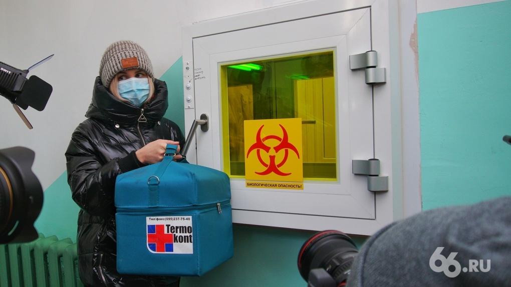 Владимиру Путину пообещали вакцину от коронавируса к сентябрю 2020 года