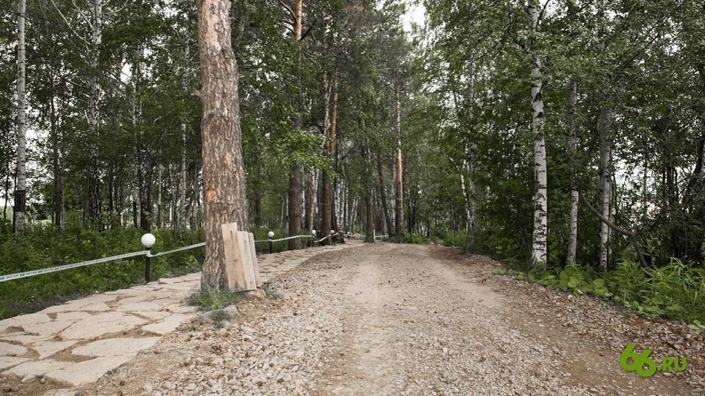 Вход в Шарташский лесопарк станет платным