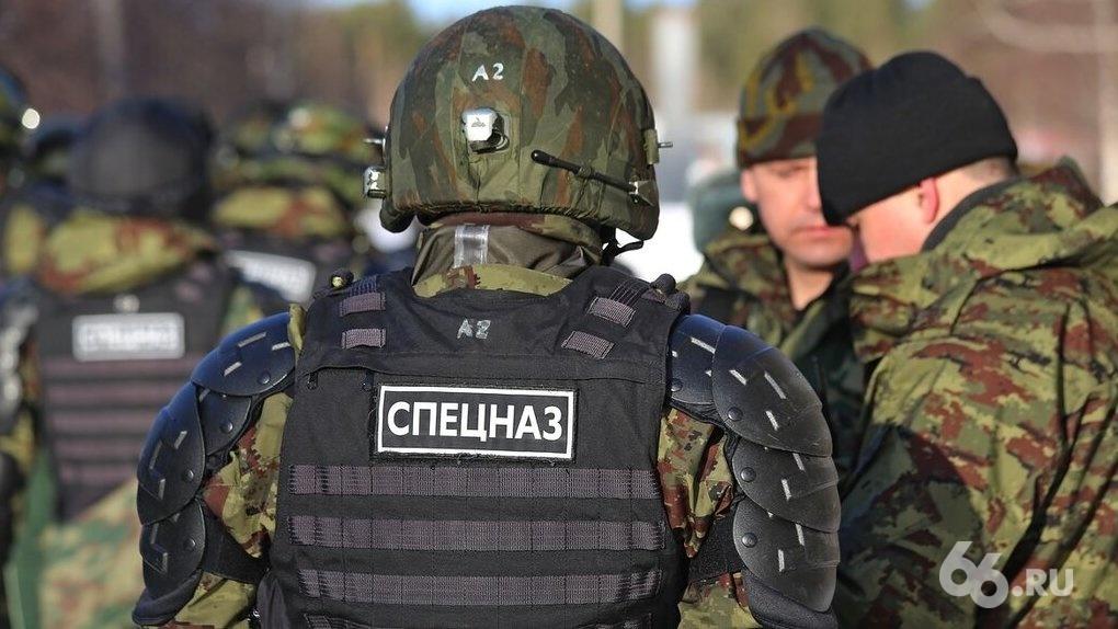 Полиция поймала колумбайнеров, планировавших устроить бойню в школе или техникуме