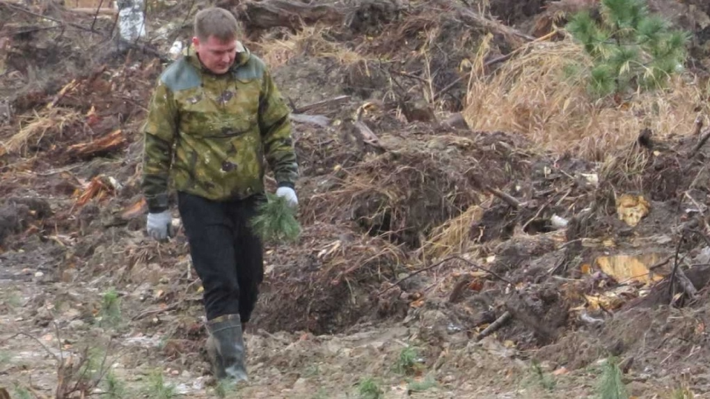 ЕВРАЗ направил на восстановление уральских лесов 30 млн рублей